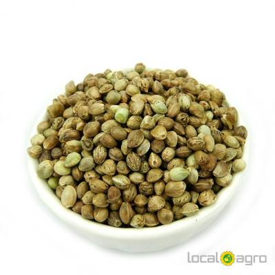 Agriculture Advert: Well choose HEMP SEEDS  image in the Advert list