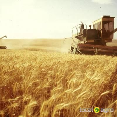 Agriculture Advert: Привлекаем инвестиции, оптовая image in the Advert list
