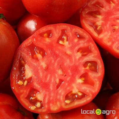 Agriculture Advert: Fresh BEEF tomatoes ftom Tunisia image in the Advert list