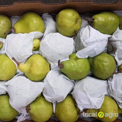 Agriculture Advert: Pears from Argentina (box 14 kg) image in the Advert list