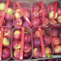 Nectarines from Spain (box-5kg)