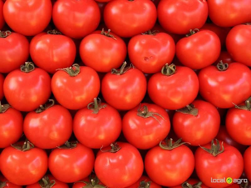 Доска объявлений москва, овощи фрукты дать объявление сельхозтехника