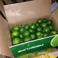 Fresh Green Lime From Vietnam