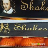 Oranges from Spain Shakespeare