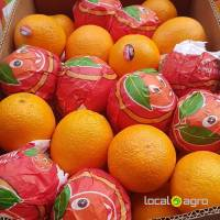 Valencia oranges from Egypt