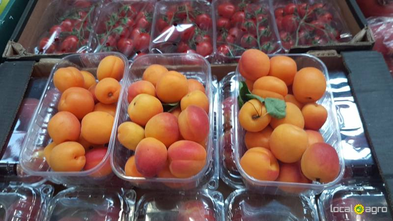 Apricotes from Spain