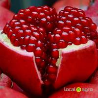Fresh pomegranates Turkish